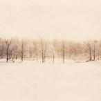 Milan Norton Landscape