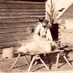 Milan Norton Pigs 002